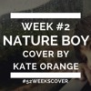 Nature Boy Cover By Kate Orange