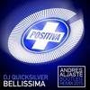 DJ Quicksilver - Bellissima (Andres Aljaste Bootleg Remix 2016)[FREE DOWNLOAD]