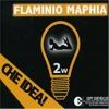Flaminio Maphia Vs. Me & My Toothbrush - Che Gold Member (Mhiky Mashup)