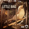 Louise Golbey - Little Bird - Blackjack Remix & Original (Available 26th Feb 2016)