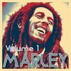 Download Bob Marley Mix Volume 1 #LaieStyleMusic Mp3