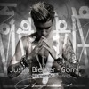 Justin Beiber - Sorry (ONel Bootleg)[FREE DOWNLOAD]