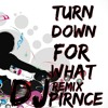 Turn Down For  What - Rmx Dirty HaXer