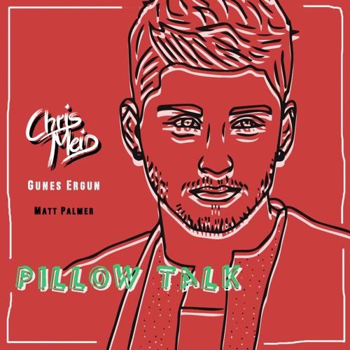 Zayn Malik - Pillow Talk (CHRIS MEID & Gunes Ergun Remix) [Matt Palmer Cover]