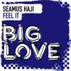 Seamus Haji - Feel It - Original Mix