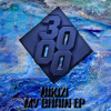 Nikizi - More Money More Problems [Free Download]
