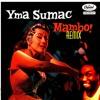 Gopher Mambo Remix