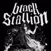 Bermain Takdir - Black Stallion