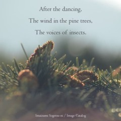 After (naviarhaiku111 -After the Dancing)