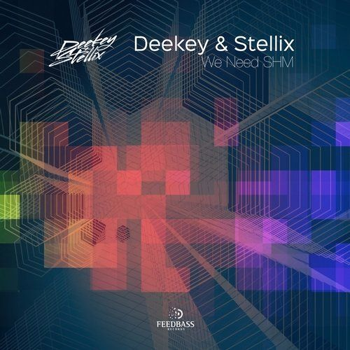 Deekey & Stellix - We Need SHM
