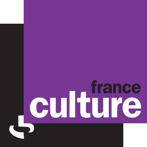 Intervention sur France Culture lors du 12h30 du 23 02 16