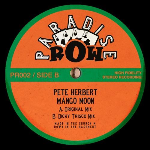 Pete Herbert - Mango Moon (Dicky Trisco Mix) - Clip