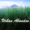 Rod Stewart - Forever Young (Urban Abandon remix)