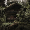 Old Log Cabin For Sale