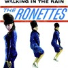 The Ronettes - Walking in the Rain
