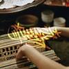 Roe instrumental / EN VENTA
