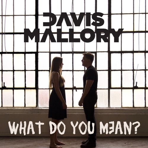 Justin Bieber - What Do You Mean? // Cover by Davis Mallory