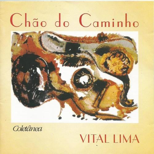 Flor do Destino - Nilson Chaves e Vital Lima