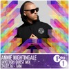 Jayceeoh - BBC Radio 1 Quest MIx - Annie Nightingale (2.24.2016)