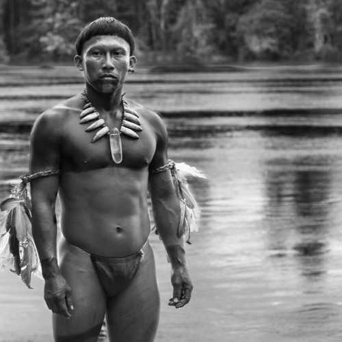 Films: 'Embrace of the Serpent' from Colombia & Notable Releases from Brazil (Lp2262016)