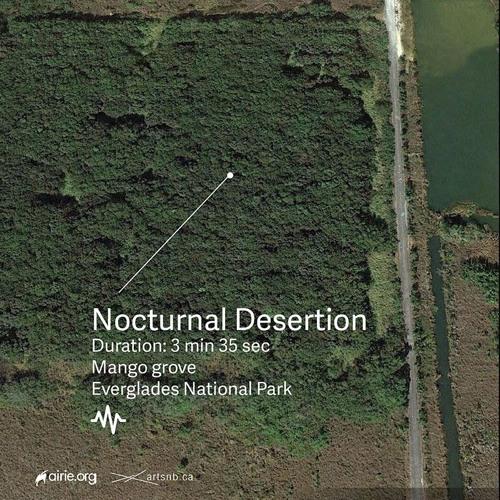 Nocturnal Desertion