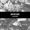 Fever Ray - If I Had A Heart (Vikings intro) | WiktorKaro Cover
