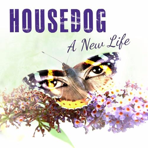 Housedog - A New Life