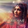 Fatih Bogalar ft. Ahmed Binali - Te Ma Etmaje mp3