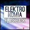 Download Lagu Mp3 Elektronomia - Flashback (4.26 MB) Gratis - UnduhMp3.co
