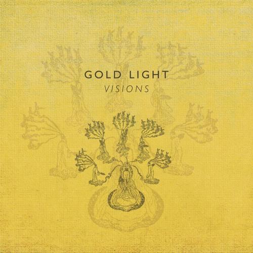 Gold Light - Rosebush