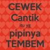 -DJ Indonesia Raya.mp3