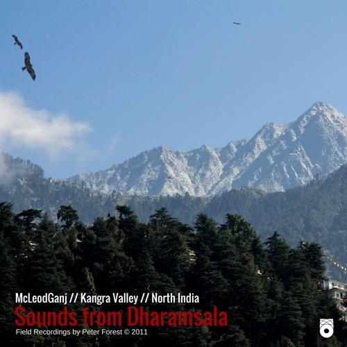 Dharamsala _The big Cook
