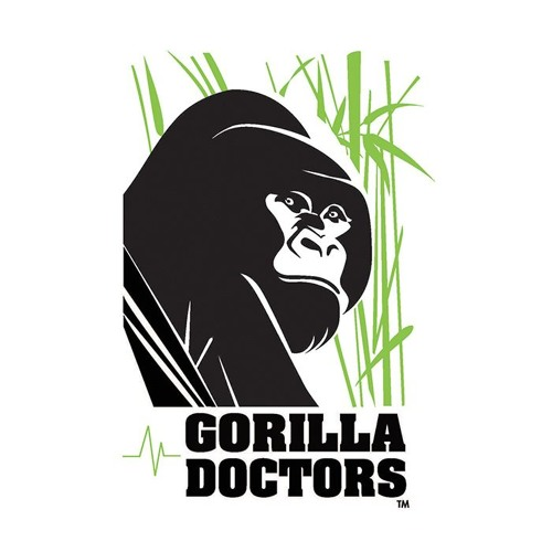 What are the disease risks for gorillas and people in Africa?