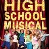 HIGH SCHOOL MUSICAL FLASH MOB SONG