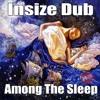 Insize Dub - Among The Sleep  (Free Download)