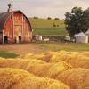 Pick Up the Banjo (Bluegrass) - American Rural Movie Score