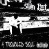 A Troubled Soul (Eminem - No Apologies Remix)