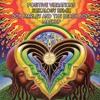 Positive Vibrations -  SriKaloGY Remix (Bob Marley and Beach Boys Mashup)