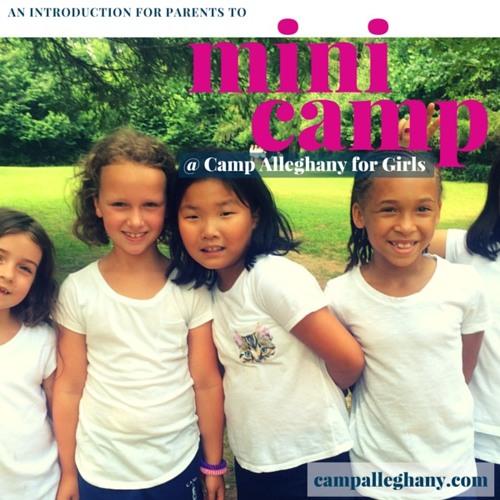 Mini Camp Podcast