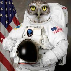 Yuri Gagar-owl