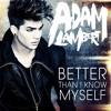 Better Than I Know Myself (Brad Walsh Remix)