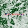 MISS MODULAR #11 | Maral