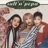 Salt N Pepa Shoop The Flying Powers Remix Mp3