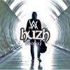 Alan Walker - Faded (HuZh Remix)