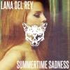 lana del rey - summertime sadness (kitsu flip)
