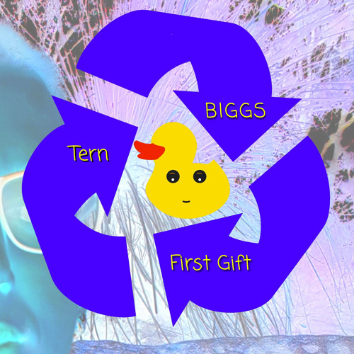 BIGGS & First Gift - Tern (Original Mix)