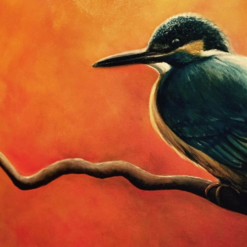 Little Kingfisher Album 2016 -