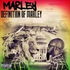 Self Reflection By Marley Mp3