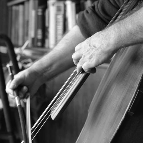 Solo Bass - Quiet Instrumental - Weddings