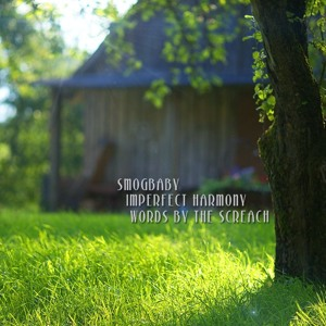 Imperfect Harmony - SmogBaby Screach Collaboration